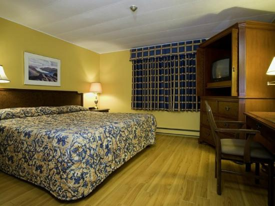 Trepassey Motel & Restaurant: King Room