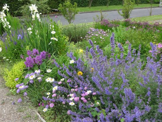 Sheedy's Country House Hotel : Gardens