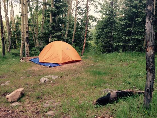 KOA-Cripple Creek: Our site.  Has a fire ring and table not shown in pic