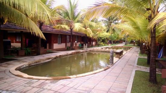 Cherai Beach Resorts In Front Of Doctor S Villa