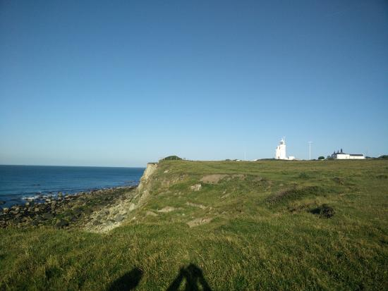 St Catherine's Lighthouse: Far view of the lighthouse