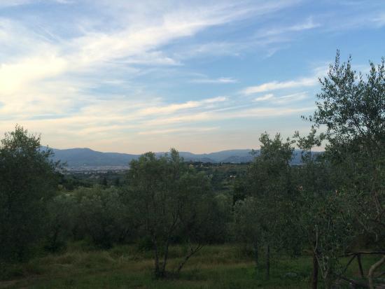 Villa Poggio ai Merli: View