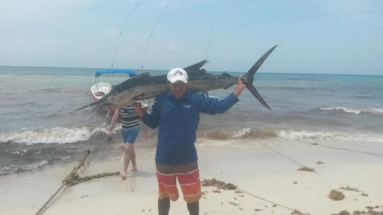 Getlstd property photo picture of fishing tour playa del for Playa del carmen fishing charters