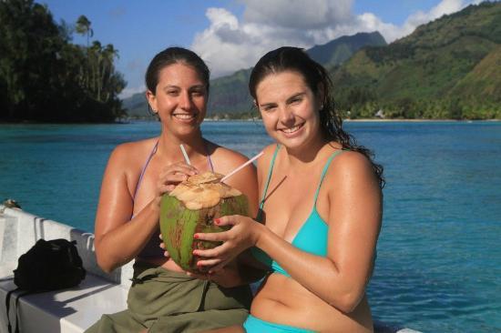 Moorea, Fransk Polynesia: Coconut Water