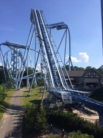 The griffon roller coaster picture of busch gardens - Roller coasters at busch gardens ...