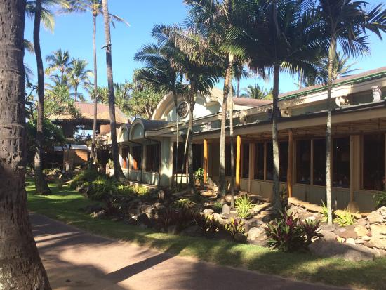 Turn here! - Picture of Mama's Fish House, Paia - TripAdvisor