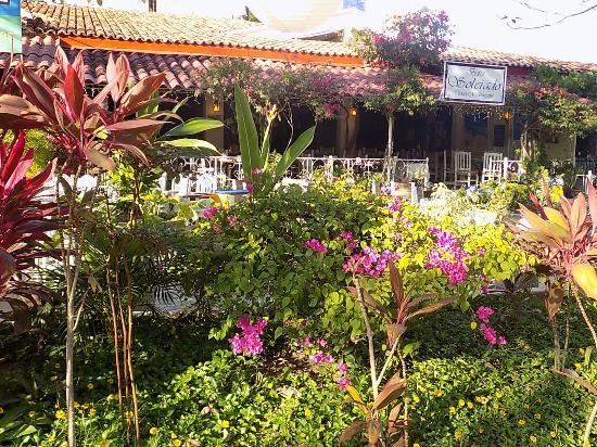 Bistro Soleiado : Nuestro hermoso jardín