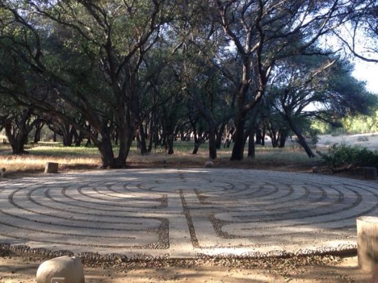 Rancho La Puerta Spa: RLP Labyrinth