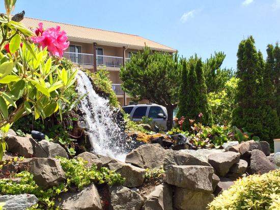 Best Western Plus Landmark Inn: Nice waterfall feature!