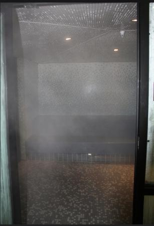 Iowa House Hotel: Steam Room