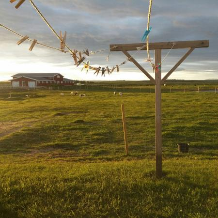 selfoss chat rooms Book hotel selfoss, selfoss on tripadvisor: i had a very comfortable stay in selfoss hotel the room was you can chat to them about the northern.
