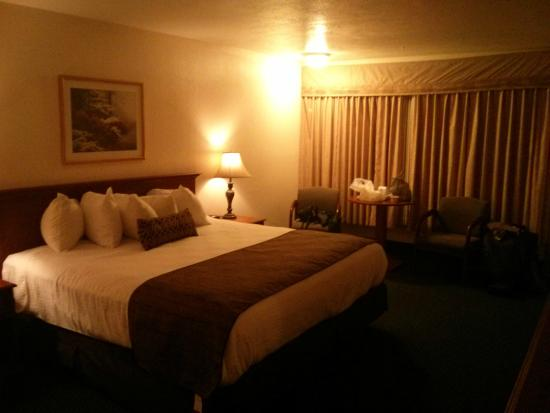 BEST WESTERN Paradise Inn of Nephi: bedroom1