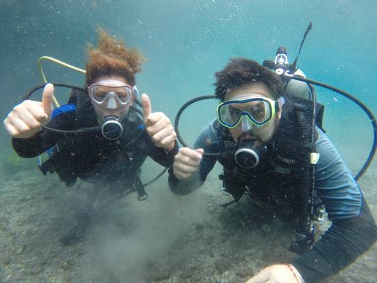 Media Luna School of Diving: Todo OK
