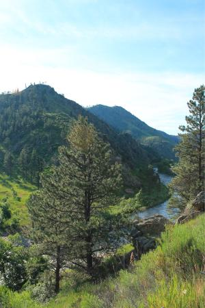 Cache La Poudre River: A gorgeous drive through spectacular scenery. Do this drive but allow a whole day.