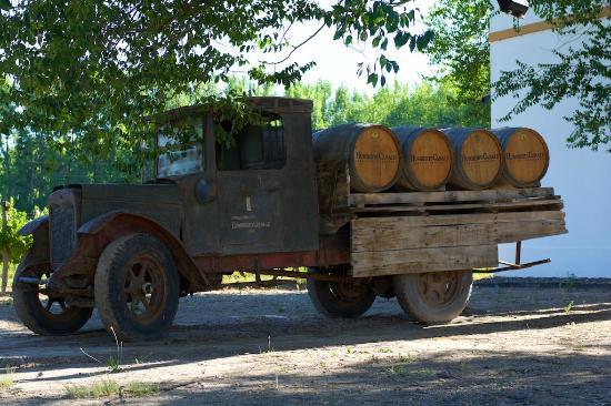 General Roca, Argentina: Bodega Canale - Un lugar soñado