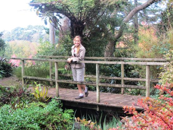 Ayrlies Garden: Garden bridge