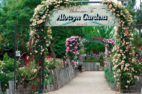 Alowyn Gardens: Welcome to Alowyn