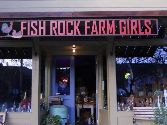 Boonville, CA: Fish Rock Farm Girls