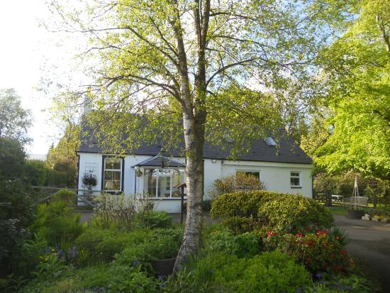 Kennels Cottage Bed & Breakfast: Aussenansicht