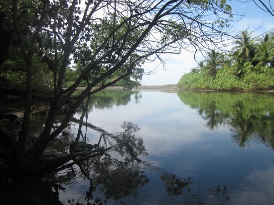 Puerto Jimenez, Costa Rica: Corcovado