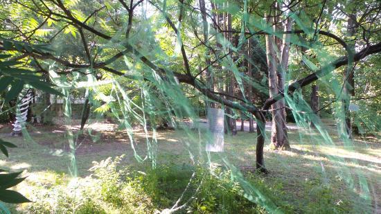 Area Verde Attrezzata Giorgini