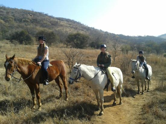 Klipriviersberg Nature Reserve Horse Trails