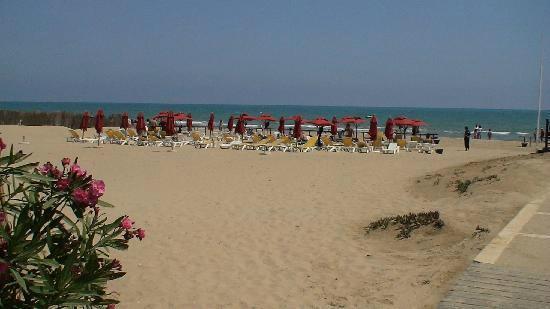 Carthage Thalasso Hotel Gammarth Tunisie  Voir Les Tarifs Et