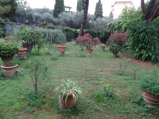 B&B Le Terrazze : The garden
