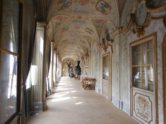 Palazzo Collicola Arti Visive