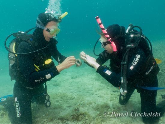 Croatia Divers Vela Luka: YES!