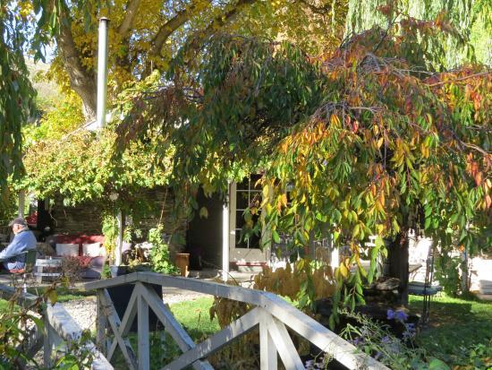 Walnut Cottage Cafe: garden