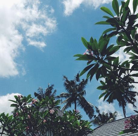 Tri Sandhya Villa : Room view