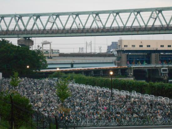 Yumenoshima Park : 陸上競技場から見えた京葉線の鉄橋