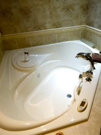 The Maple Inn: Jacuzzi in the Empire Room