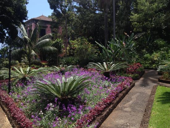 Presidential Palace Garden : prachtige kleuren