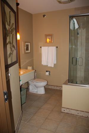 BlueGreen Odyssey Dells: Bathroom
