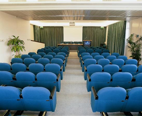 Hotel Bristol Buja: Sala congressi