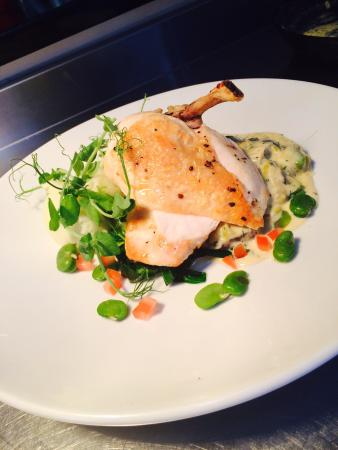 Coast Coffee Bar and Bistro: Free range chicken