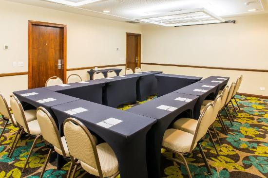 Four Points by Sheraton Curitiba: Tingui - meeting room