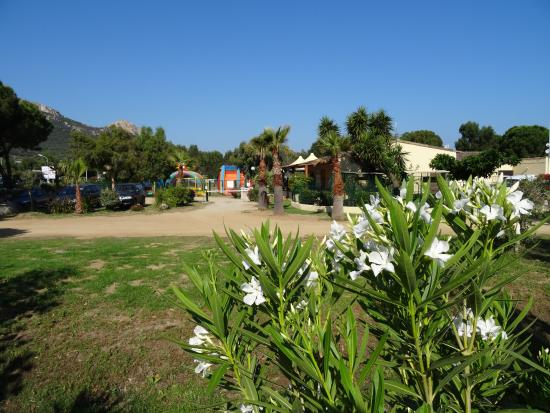 Camping Marina Aregno Plage