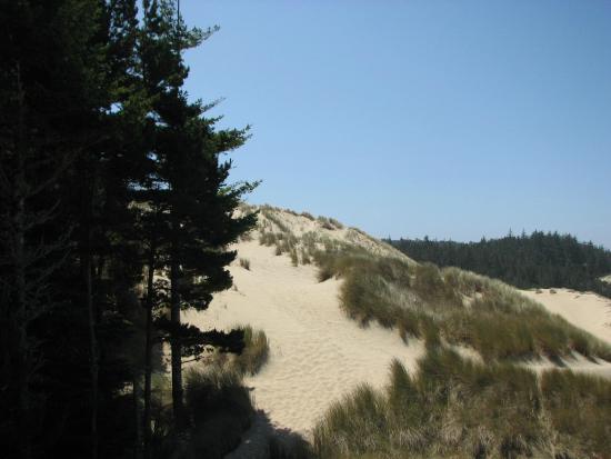 ฟลอเรนซ์, ออริกอน: Florence - Oregon - Dunas