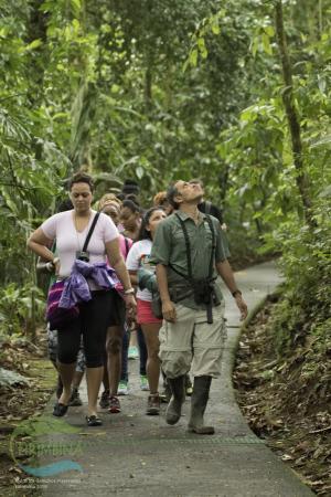 Tirimbina Lodge: Caminata guiada