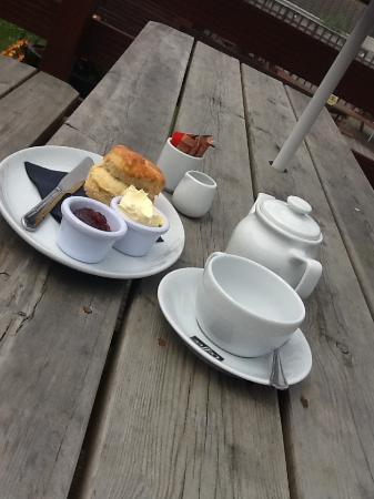 Mounts Bay Inn: our delicious homemade cream tea