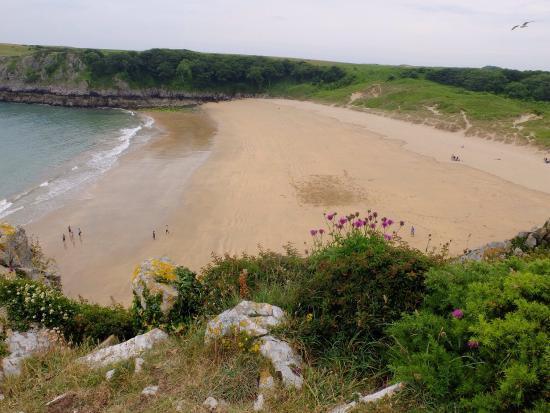 Barafundle Bay Beach Pembroke