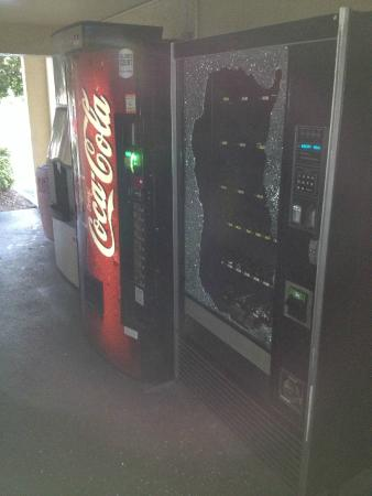 La Quinta Inn Tampa Bay Airport: Theft Candy Machine 6/29