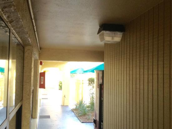 La Quinta Inn Tampa Bay Airport : Bright Lights Hallway (too bright)