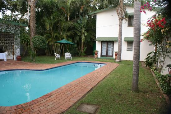 Igwalagwala Guest House : Pool set in tropical garden