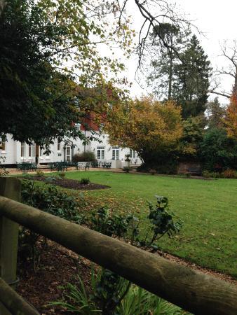 Moorhill House Hotel : an alternative garden view