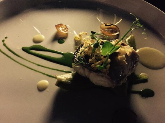 Restaurant 360: Dentix - the nicest fish dish I have ever had in Croatia