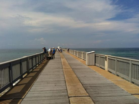 Russell fields city pier picture of russell fields city for Panama city fishing pier